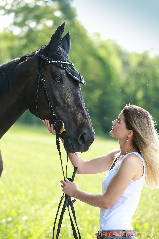 FOTIFABRIK.ch: pferde-fotografie.ch-Beitrag: Pferde-Fotoshooting